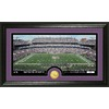 The Highland Mint 20-in W x 12-in H Baltimore Ravens Stadium Bronze Coin Panoramic Photo Mint Limited Editions