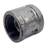Mueller Proline 1-1/2-in Dia Galvanized Coupling Fitting