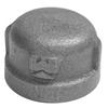 Mueller Proline 1-in Dia Galvanized Cap Fittings