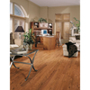 Pergo 3.25-in W Prefinished Oak Hardwood Flooring (Butterscotch Oak)