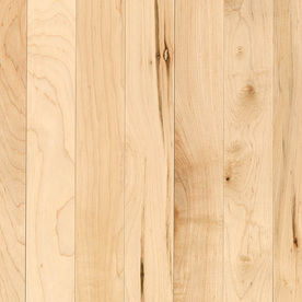 allen + roth 0.75-in Maple Hardwood Flooring Sample (Country Natural Maple)