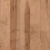 allen + roth 0.75-in Maple Hardwood Flooring Sample (Vanilla)