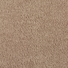 Eco-Treasure Warm Apricot Textured Indoor Carpet