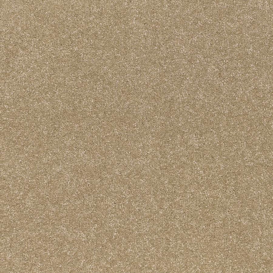Shop Paint Brush Aztec Textured Indoor Carpet At Lowescom