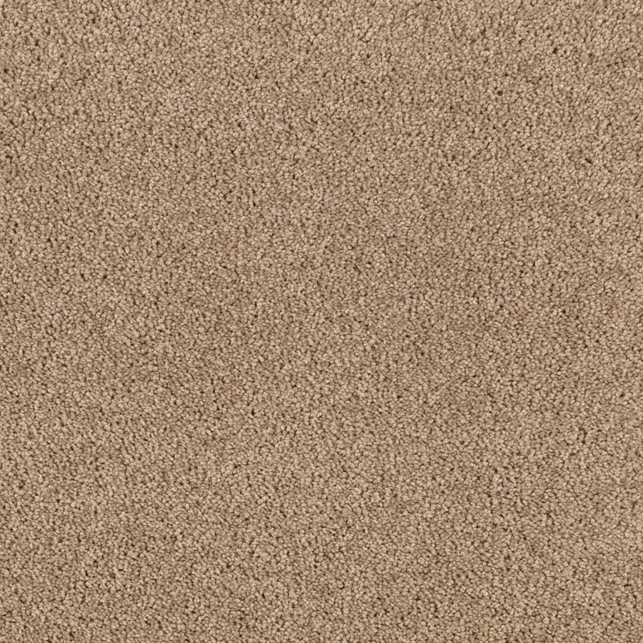 Stainmaster Carpet Samples Images 32 Model Tuftex