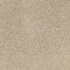 SmartStrand Denbury Solid Textured Indoor Carpet