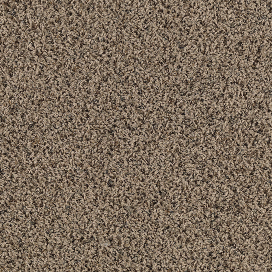 Shop Smartstrand Lichfield Solid Berber Indoor Carpet At