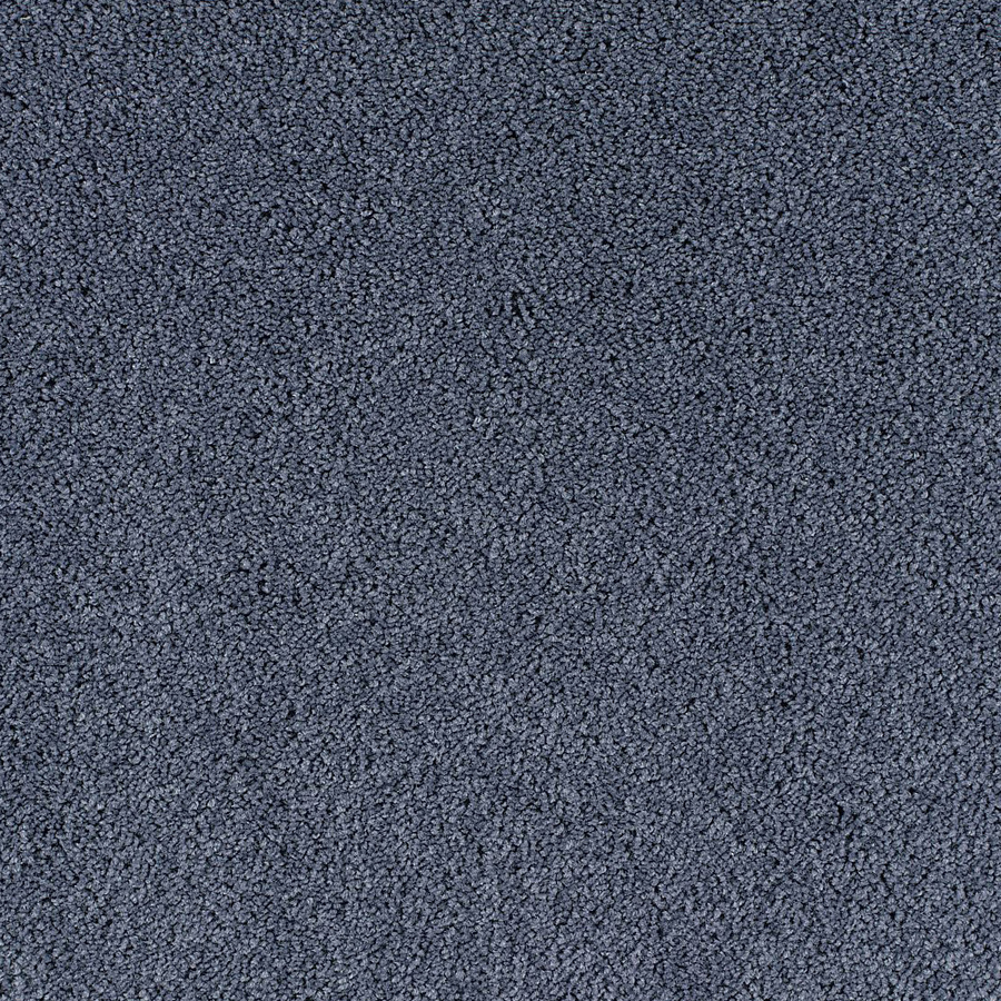 How To Maintain A Berber Carpet Clean Apps Directories