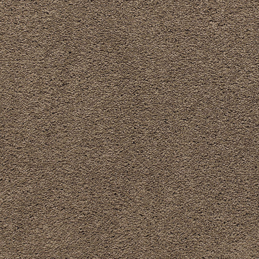 lowes carpet - 28 images - shop chancery textured indoor ...