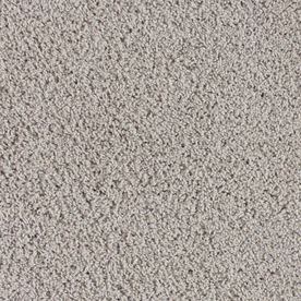 STAINMASTER Club Quarters Solid Textured Indoor Carpet
