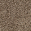 Absolute Treasure Solid Textured Indoor Carpet