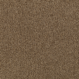 Shop Stainmaster Milford Cigar Leaf Textured Indoor Carpet