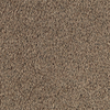 Style Wise Terra Cotta Textured Indoor Carpet