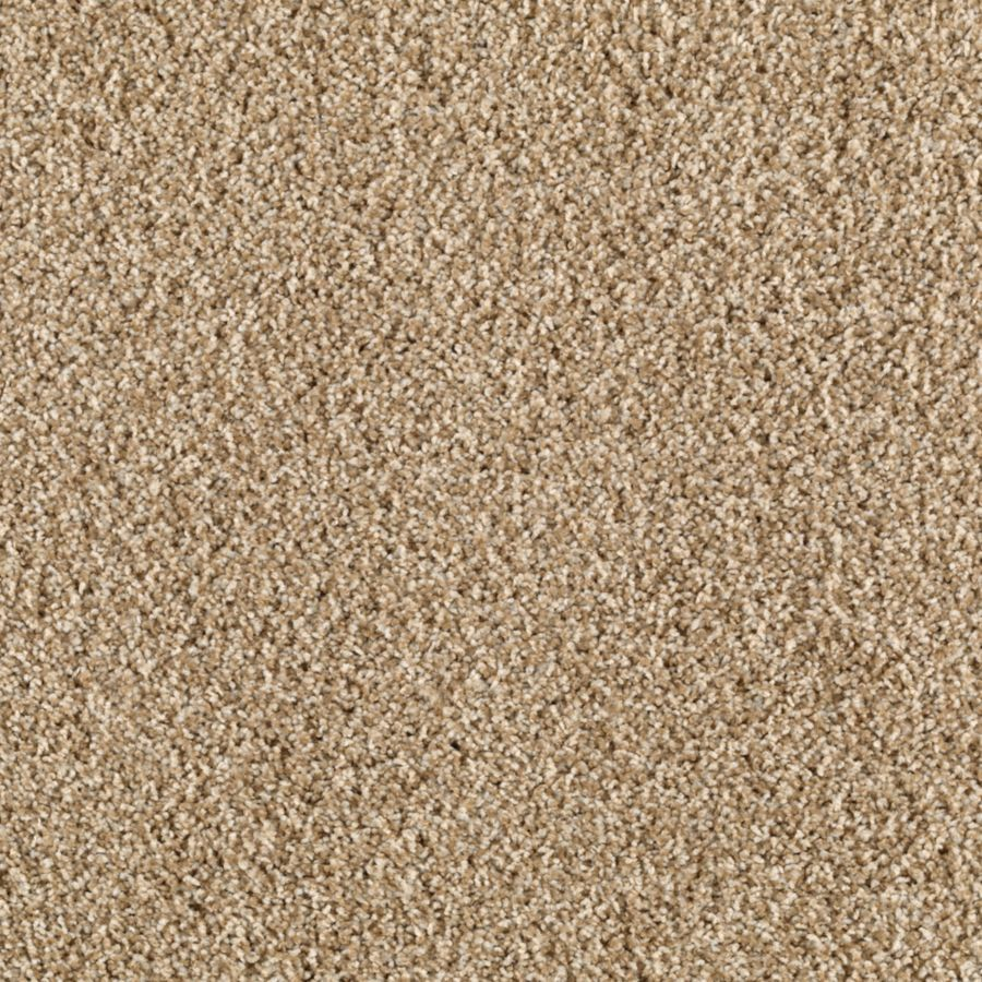 STAINMASTER Henning Saddle Tan Textured Indoor Carpet At Lowescom