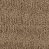 SmartStrand Hutchinson Ancestral Gold Fashion Forward Indoor Carpet