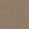 SmartStrand Hutchinson Amber Touch Fashion Forward Indoor Carpet