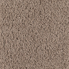SmartStrand Pender Cypress Frieze Indoor Carpet