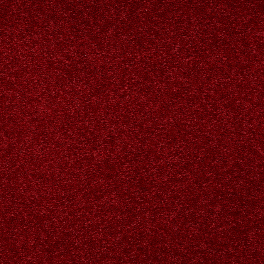 Shop Lyra III Asian Red Textured Indoor Carpet at Lowes.com