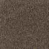Mohawk Essentials Stainmaster Caramel Toffee Textured Indoor Carpet