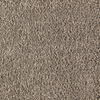 Mohawk Essentials Stainmaster Soothing Neutral Textured Indoor Carpet