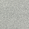 Mohawk Essentials Stainmaster Cool Morning Textured Indoor Carpet