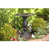 allen + roth Traditional Birdbath