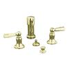 KOHLER Bancroft Vibrant French Gold Vertical Spray Bidet Faucet with Trim Kit