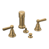 KOHLER Pinstripe Vibrant Brushed Bronze Vertical Spray Bidet Faucet