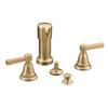 KOHLER Pinstripe Vibrant Brushed Bronze Vertical Spray Bidet Faucet with Trim Kit