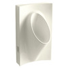 KOHLER 19.125-in W x 31.875-in H Biscuit Wall-Mounted Urinal