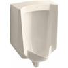 KOHLER 18-in W x 26.875-in H Almond Wall-Mounted WaterSense Urinal