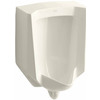 KOHLER 18-in W x 26.875-in H Biscuit Wall-Mounted WaterSense Urinal