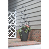 15.8-in W x 56.5-in H Powder-Coated Trellis