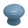 Style Selections 1-1/4-in Blue Round Cabinet Knob