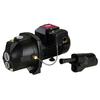 Utilitech 1-HP Cast Iron Convertible Jet Well Pump