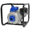 IPT 5-HP Cast Iron Gas-Powered Utility Pump