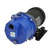 IPT 0.5-HP Cast Iron Electric Utility Pump