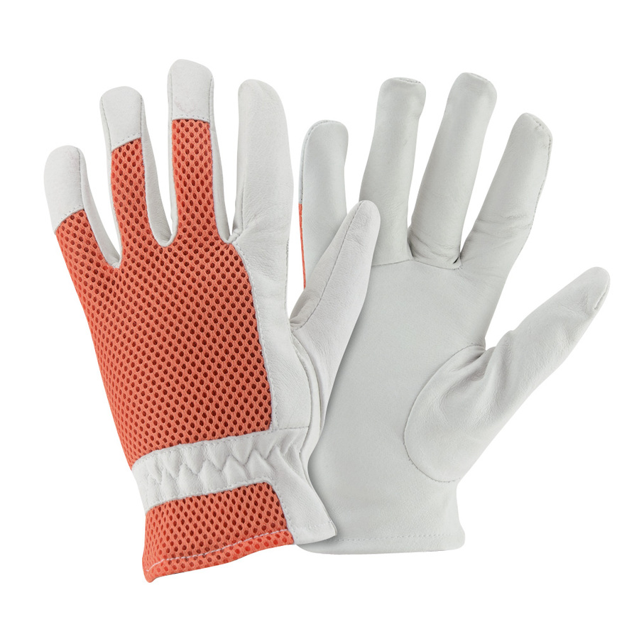 Shop style selections women 39 s large white leather garden for Gardening gloves ladies