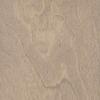 Style Selections 0.413-in Birch Locking Hardwood Flooring Sample (Grey)