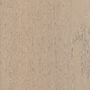 Style Selections 0.413-in Oak Locking Hardwood Flooring Sample (Grey)