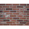 Z-Brick 2.3-in x 8-in Inca Used Individual Piece Brick Veneer