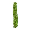 10-Pack Decorative Plastic Garland Ties