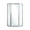 Swanstone 36-in W x 70-in H Polished Chrome Neo-Angle Shower Door