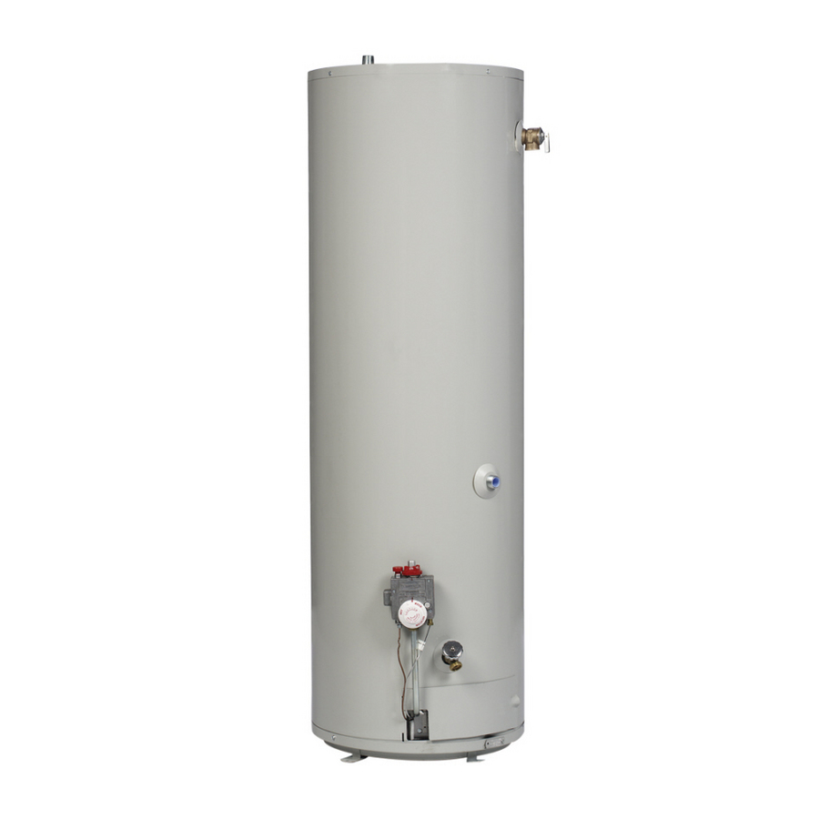 Shop Mobile Home 40-Gallon 6-Year Mobile Home Gas Water Heater ...