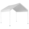 ShelterLogic 10 x 10 Canopy Storage Shelter