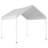 ShelterLogic 10 x 10 Polyethylene Canopy Storage Shelter
