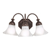 Portfolio 3-Light Bloom Oil-Rubbed Bronze Bathroom Vanity Light