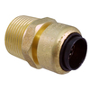 Blue Hawk 1/2-in x 3/4-in dia Male Adapter Push Fitting