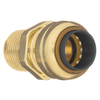 Blue Hawk 1/2-in dia Male Adapter Push Fitting