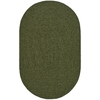 Safavieh Braided Green Oval Indoor and Outdoor Braided Area Rug (Common: 5 x 8; Actual: 40-in W x 96-in L x 0.5-ft Dia)